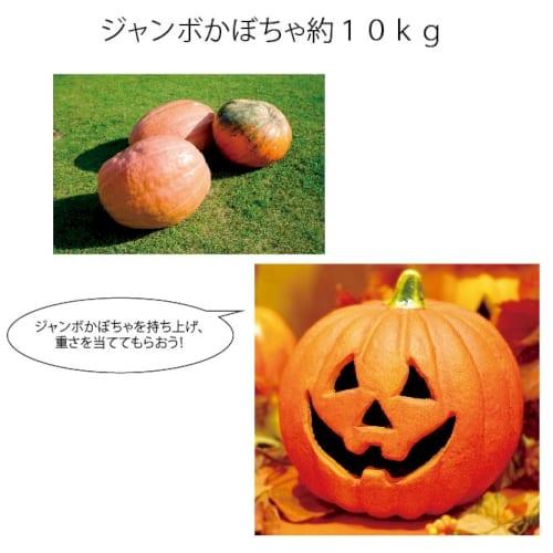 ジャンボかぼちゃ約10kg