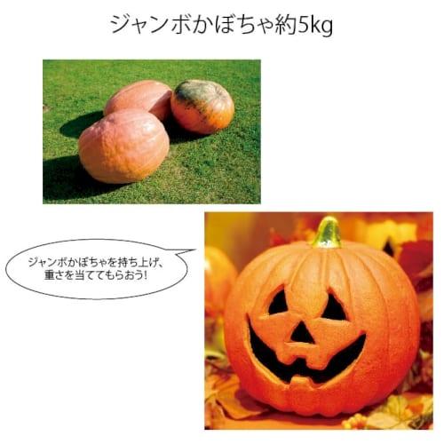 ジャンボかぼちゃ約5kg