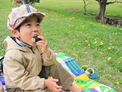 ピクニックで食事する子供