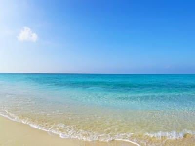 きれいな海の画像
